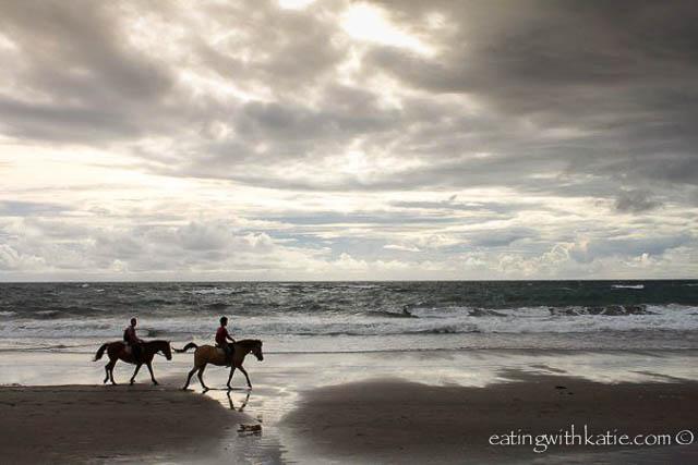 horses on bali beach